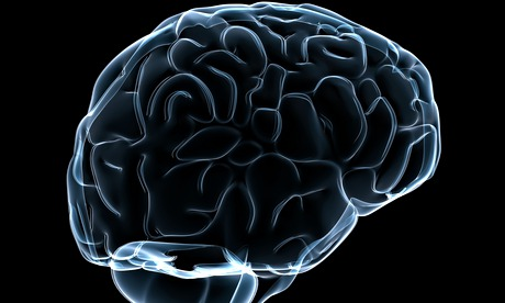 Many researchers refused to join on the grounds that it was too premature to attempt a simulation of the entire human brain. Photograph: Sebastian Kaulitzki /Alamy